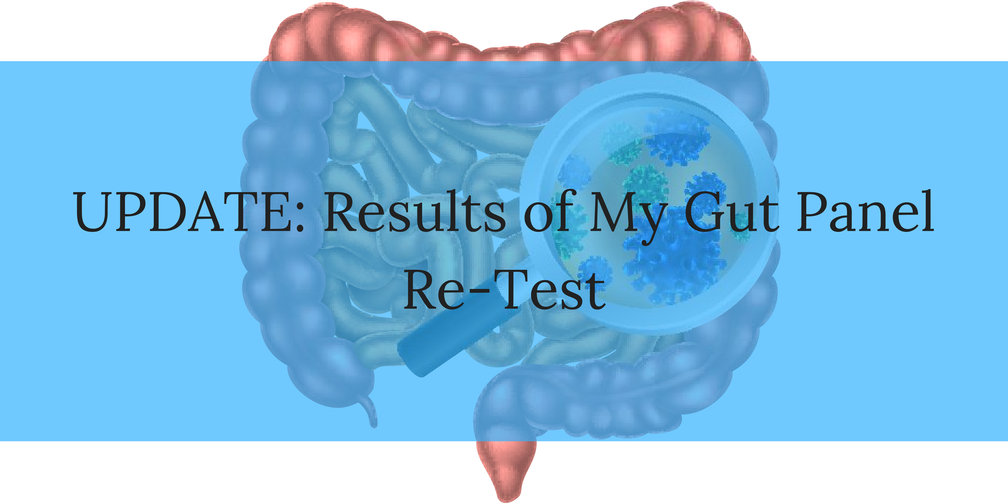 UPDATE: Results of my GI-MAP Gut Test - Kendra Perry